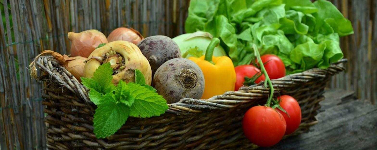 Consumo responsable en alimentos: Tendencia con grandes beneficios a la salud